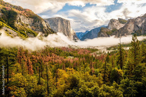Photo  Yosemite Valley at cloudy autumn morning