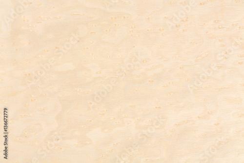 Fotografie, Obraz  Bright natural maple wood design texture. Natural background clo