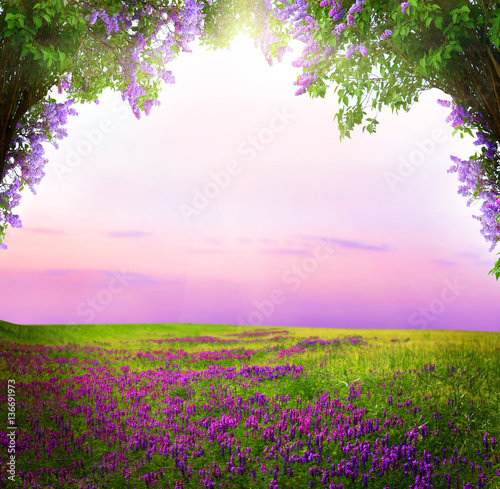 Fantasy background . Magic forest.Beautiful spring landscape.