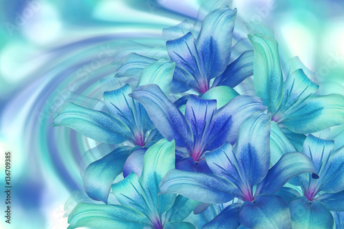 Obrazy turkusowe  lily-bright-blue-turquoise-on-turquoise-background-floral-collage-flower-composition-for