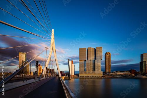 Aluminium Prints Rotterdam Erasmus Brücke, Rotterdam, Holland, Niederlande