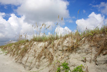 Background With Sand Dunes And...