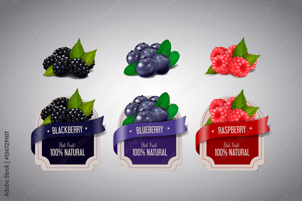 Fototapeta Realistic Berry labels set with blackberry, blueberry and raspbe