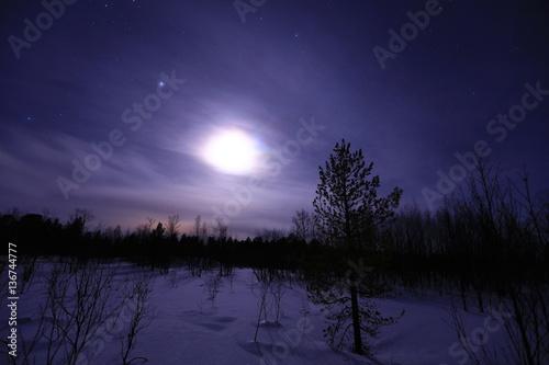 Winterlandschaft, Skandinavien, Norwegen, Schweden, Finnland, Island Billede på lærred
