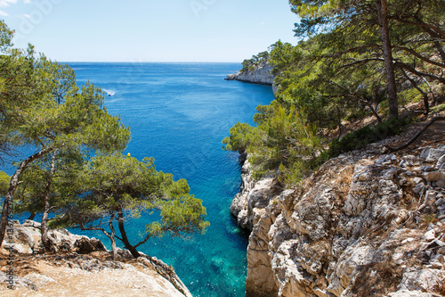 Cuadros en Lienzo Calanques of Port Pin in Cassis, Provence, France