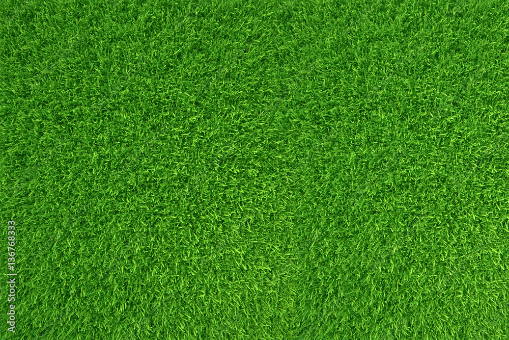 Fototapety, obrazy: Green grass. natural background texture. high resolution. 3d rendering