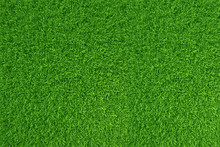 Green Grass. Natural Backgroun...