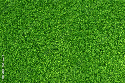In de dag Groene Green grass. natural background texture. high resolution. 3d rendering