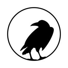 Crow Vector Illustration Style...