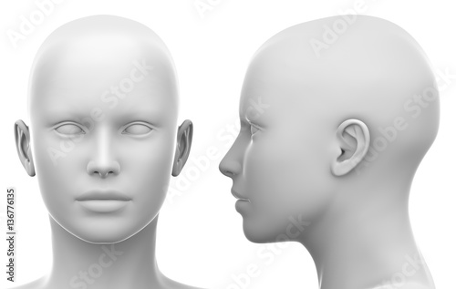 Fototapeta Blank White Female Head - Side and Front view