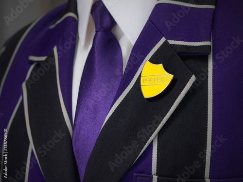 School boys blazer with yellow prefect school badge Wallpaper Mural