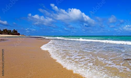 Fotobehang Donkerblauw Picturesque coast Diani