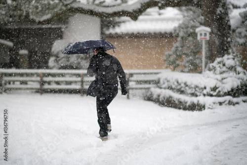 Approach Kinkakuji temple,snow scene,Kyoto,tourism of Japan Poster Mural XXL