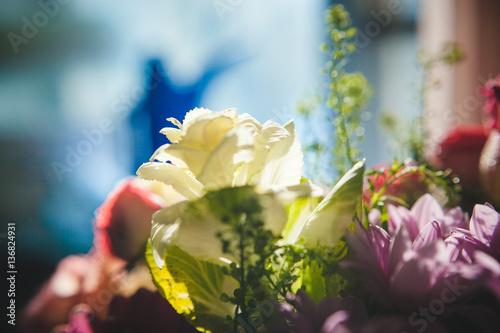Aluminium Prints Bee sunny flower