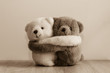 canvas print picture - White and brown teddy bears hugging.