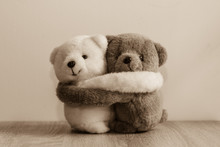 White And Brown Teddy Bears Hu...