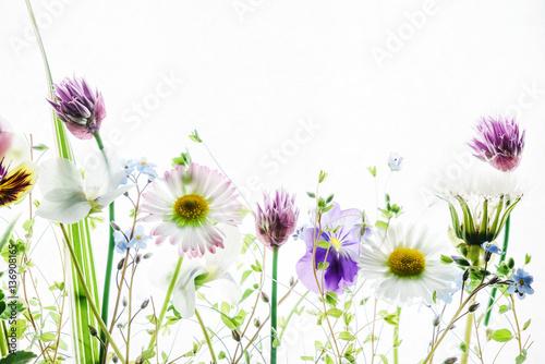 Fotobehang Bloemenwinkel spring flowers