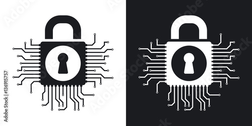 Photographie  Vector information security concept icon