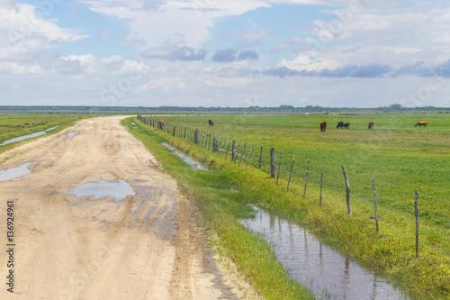 Photo  Dirty road to Lagoa do Peixe lake