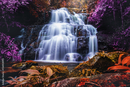 Poster Bordeaux Natural background waterfall. waterfall
