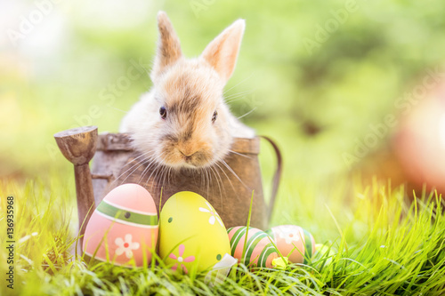 Plakat Osterkarte