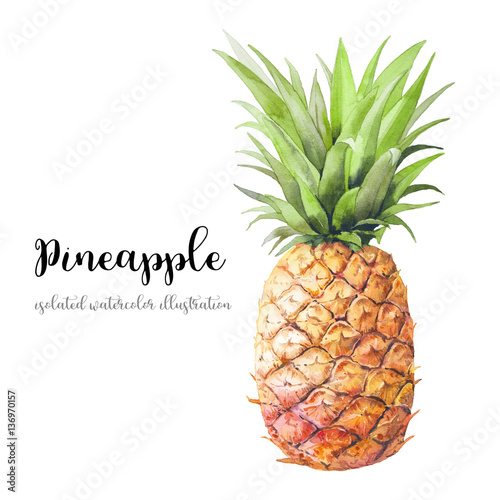 Watercolor pineapple. Hand painted modern decorative fruit object isolated on white background. Summer food decor illustration Wall mural