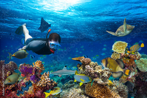 young male snorkler exploring colorful underwater world coral reef with many fishes sea turtle shark snorkling background