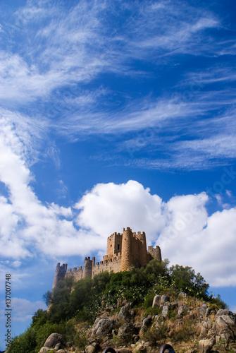 Fotografie, Obraz  Almourol Castle, Santarém, Portugal