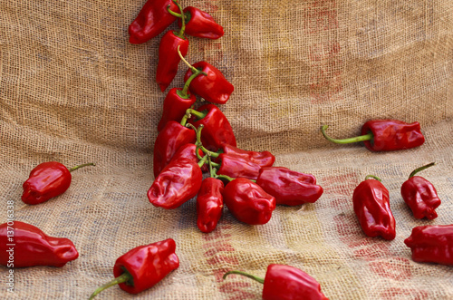 Staande foto Hot chili peppers Ristra de Pimientas