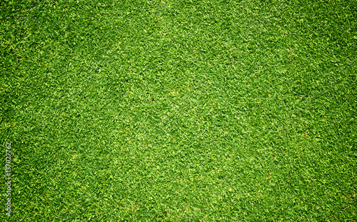 Poster Gras grass background Golf Courses green