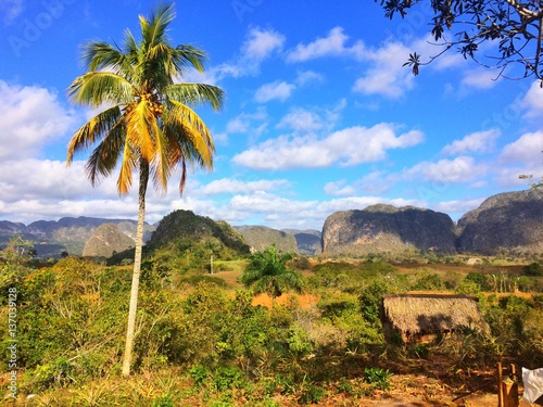 Famous tobacco area in Cuba,Valley de Vinales,Pinar del Rio Wallpaper Mural