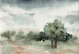 Watercolor landscape. trees. Outdoors. Park. Summer. - 137046527