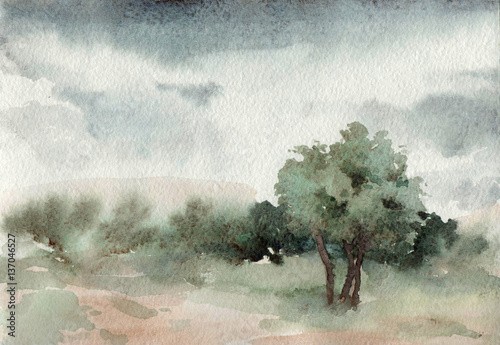 Poster Blanc Watercolor landscape. trees. Outdoors. Park. Summer.