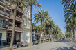 Seaside promenade in Badalona surrounded by palm trees under blue skies, Barcelona, Spain