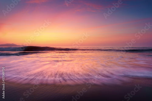 Poster Corail sunset on beach shore
