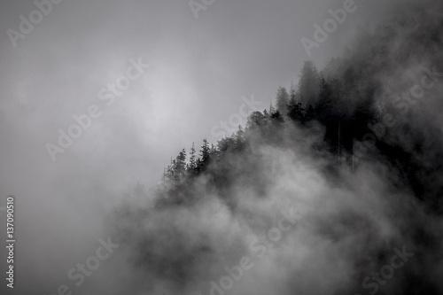 gory-mgla-i-drzewa-w-dolomitach