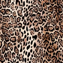 Natural Leo Print - Animal Seamless Background