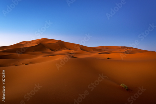 Keuken foto achterwand Rood paars View of the dunes at dawn in Erg Chebbi near Merzouga in Morocco, North Africa; Concept for travel in Morocco
