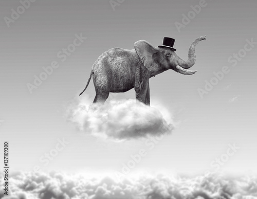 Fotografía Elephant flying in the clouds