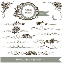 Set Of Floral Calligraphic Elements. Vector Roses And Wedding Design Elements