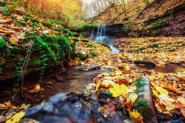 Fototapeta na wymiar Waterfall in autumn sunlight. Beauty world. Carpathians. Ukraine. Europe