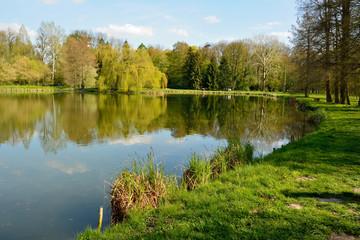 Fototapeta na wymiar Pond in Kornik Arboretrum in Poland.