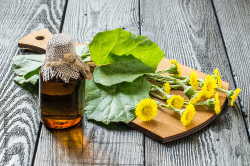 Fényképezés Medicinal plant coltsfoot (Tussilago farfara) and the infusion