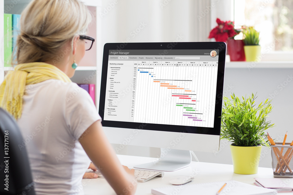 Fototapeta Woman using Gantt chart for project management