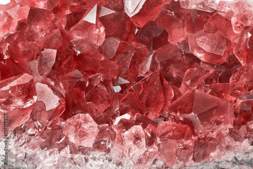 Cuadros en Lienzo  red ruby group macro