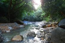 Saut D'acomat En Guadeloupe
