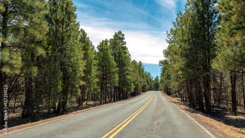 autostrada-przez-las-blisko-uroczystego-kanionu-arizona
