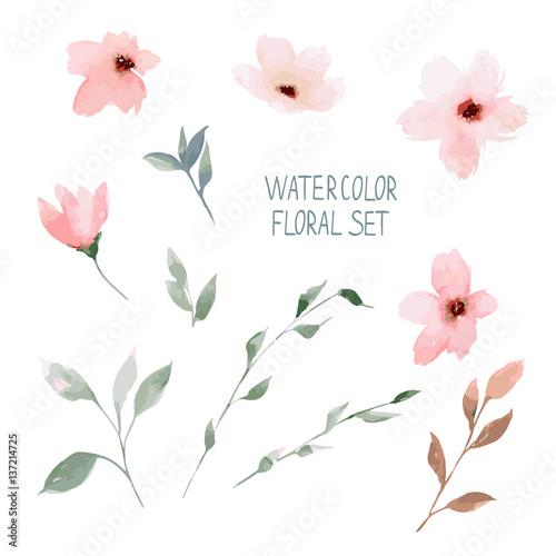 Photo Watercolor floral set. Painted flowers