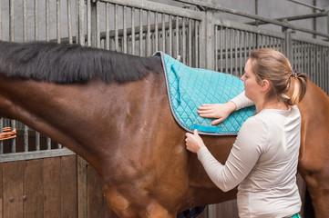 Pferd wird gesattelt - die Schabracke als Sattelunterlage