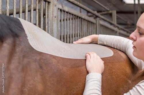 Montage in der Fensternische Reiten Reitsport - Pferd satteln mit Silikon Unterlage